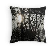 Sunlight Peeking Through Throw Pillow