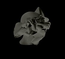 Two Heads // Dark Rose by CATACOMBIOUS