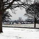 Beverley Minster from a snow covered Westwood by Jon Tait