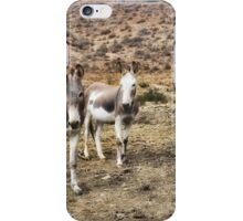 Burros at Punta China iPhone Case/Skin