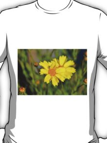 Crown Daisies T-Shirt