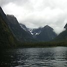 Foggy Milford Sound by inglesina