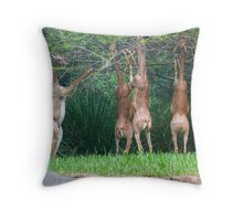 Gerenuks Throw Pillow