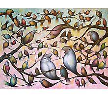 Bird Song #2 Photographic Print