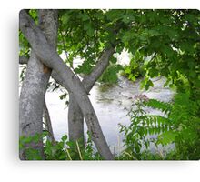 GREEN, GRAY AND SILVER Canvas Print