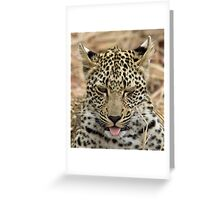 Cuteness Greeting Card