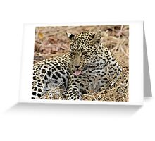 Leopard Cub Expressing Herself Greeting Card