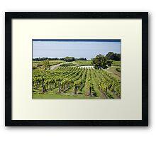Lakeside Vines Framed Print
