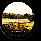VIEW THROUGH A TYRE SWING by Marinapallett