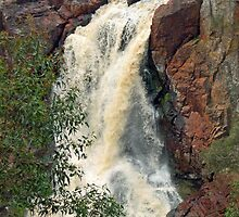 Nigretta Falls Again by Jackal