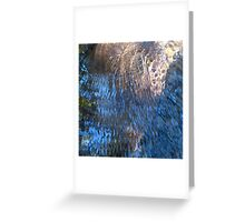 Chico Creek Greeting Card