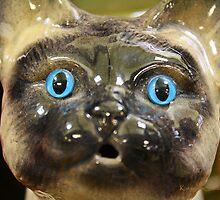 Old Blue Eyes by Katagram