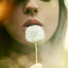 Make a Wish.. by Mena Assaily