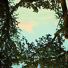 Trees <3 Sunshine by Sara Wood