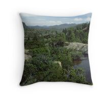 The Labrynth  #1 Throw Pillow