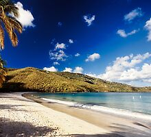 Magens Bay , St. Thomas, US Virgin Islands by George Oze