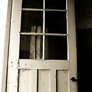 open door by tego53