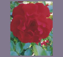 Red Roses with Sunlight Kids Clothes