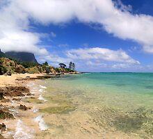 Lord Howe Island Lagoon Panoramic by Martin Levett