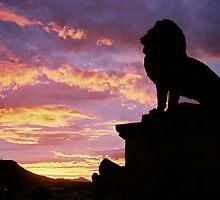 Aslan by Kirstyshots