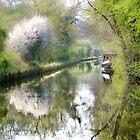 spring canal 2 by Brett Trafford