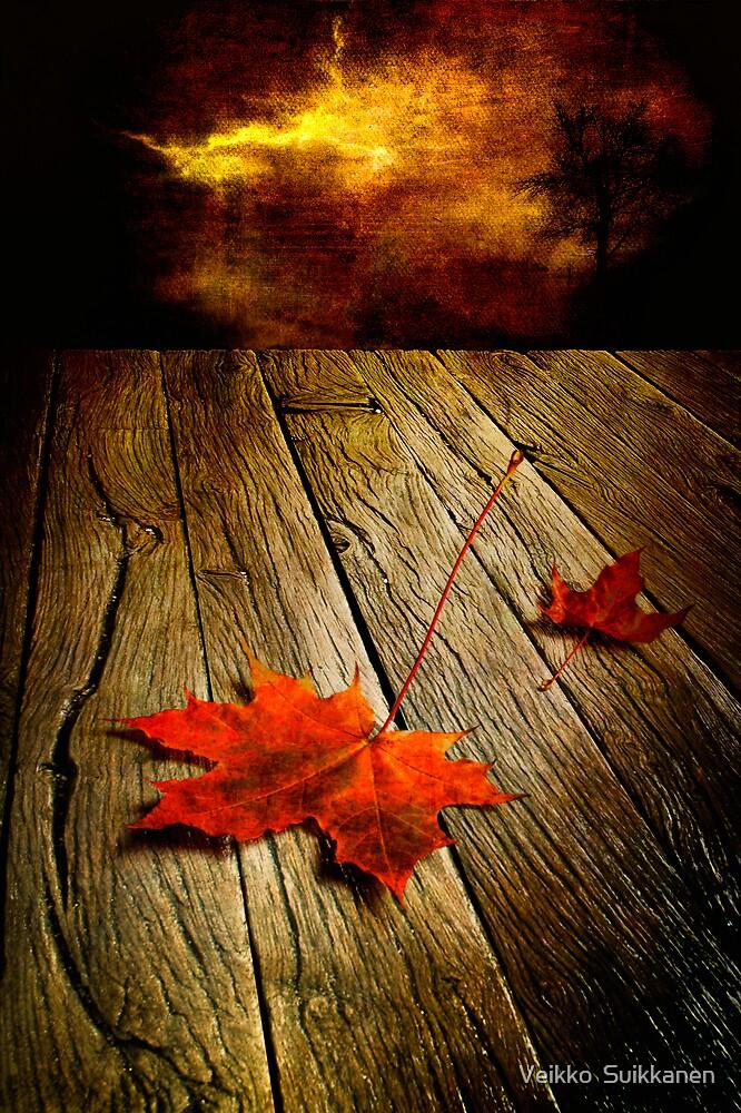 Autumn storm by Veikko  Suikkanen