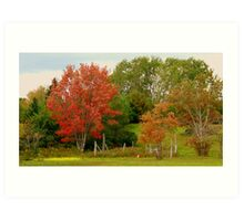 Blustery fall day Art Print