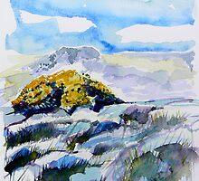 Yellow Gorse 2 by Richard Sunderland