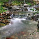Evening on Baring Creek by Dennis Jones - CameraView
