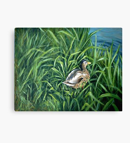 Ey up me duck Canvas Print