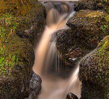 Rocks n' Silk by Karl Williams