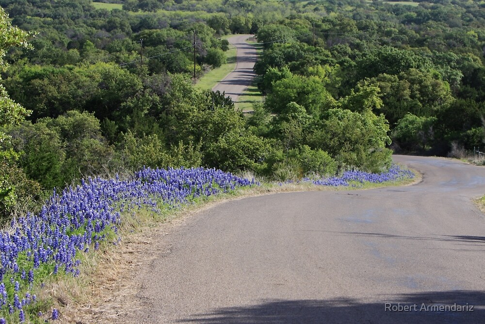 Bluebonnets and country road by Robert Armendariz