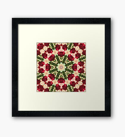 Old Red Rose Kaleidoscope 5 Framed Print