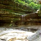 LaSalle Canyon by Donna R. Carter