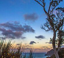 Australian Sunset by Elysian Photography