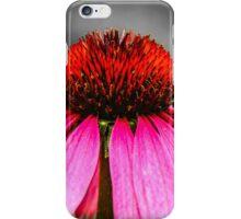 Purple Coneflower - SC iPhone Case/Skin