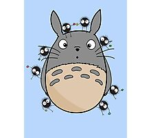 Little Totoro Photographic Print
