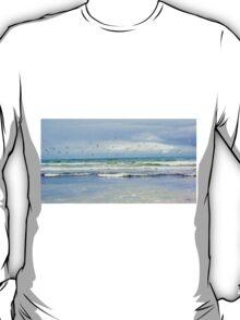 Seagulls soaring T-Shirt