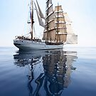 The Bark Europa and her Reflection by Lucy Hollis