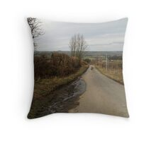 Mud On Road Throw Pillow