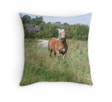 Haflinger Pony Throw Pillow