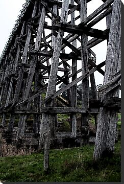 Old Rail Bridge by Diana-Lee Saville