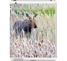 Mother Moose in Tall Grass iPad Case/Skin