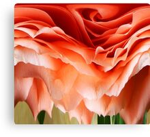 DISTORTED ROSE Canvas Print