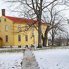 Shaker House - Mustard by Mary Carol Story
