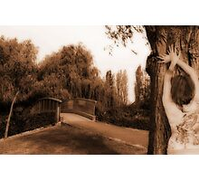 The dilema Photographic Print