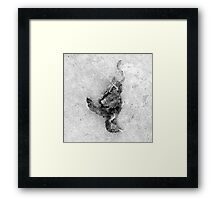 WHEN THERE ARE NO SONGS 1006 Framed Print