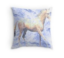 i beleive in dreams Throw Pillow