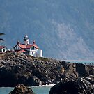 Battery Point Lighthouse by Stephen  Van Tuyl