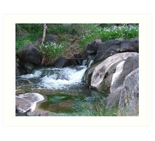 Nyaania Creek Art Print